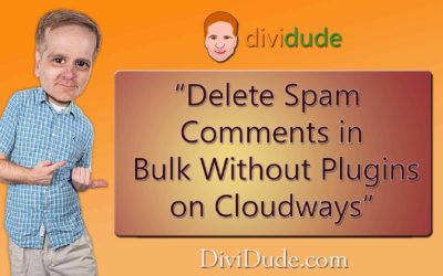 Delete Spam Comments in Bulk Without Plugin on Cloudways